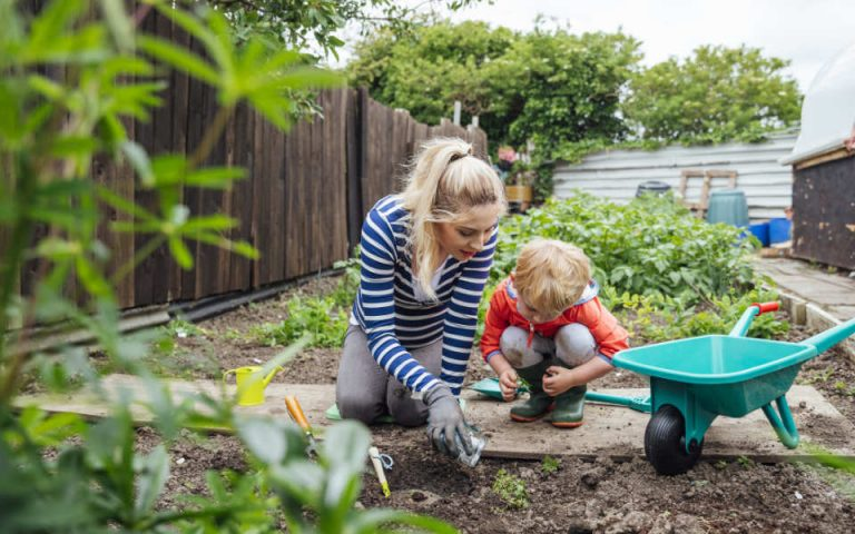 Benefits Of Gardening: For Healthy Mind, Body, and Environment